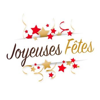 les mots joyeuses fêtes avec de étoiles autour des mots